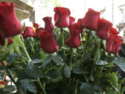 55. Gönülçelen -Inima furata - Heart Stealer - General Discussions - Comentarii - Pagina 38 Trandafiri-2